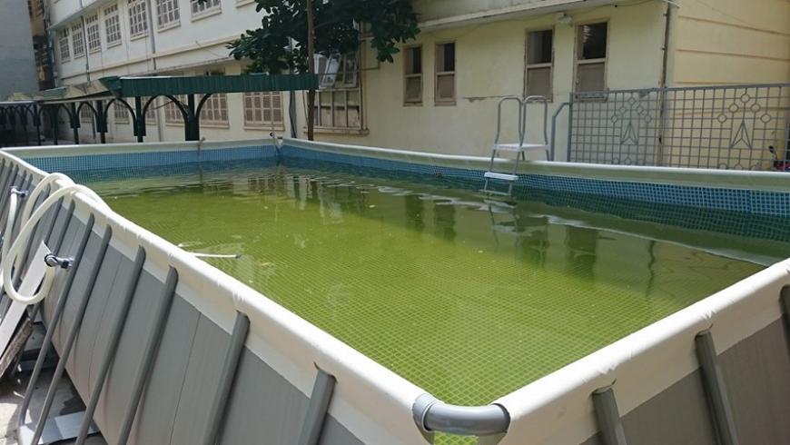 Các 'bệnh' thường gặp khi vận hành hồ bơi di động