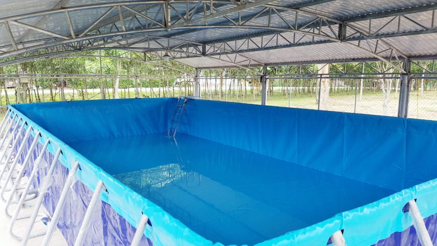 Hoàng Hải tài trợ bể bơi miễn phí thứ 3 tới miền trung Quảng Bình