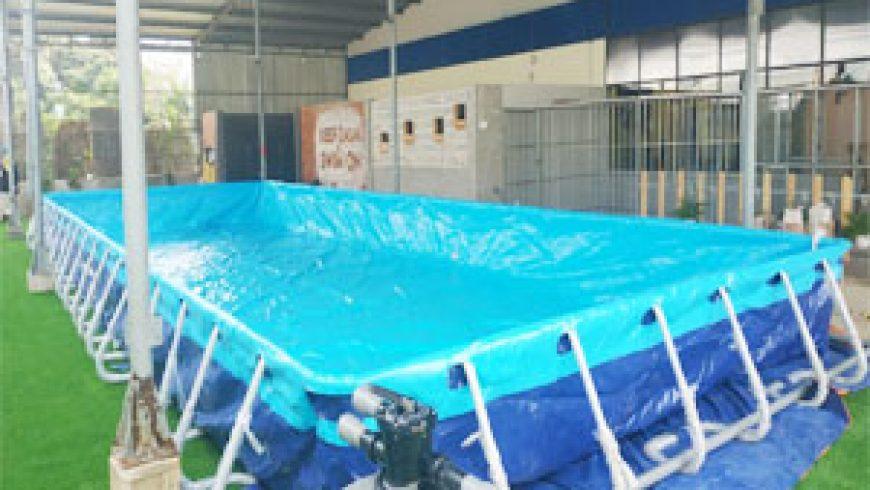 Hoàng Hải bàn giao hồ bơi di động tại Cà Mau