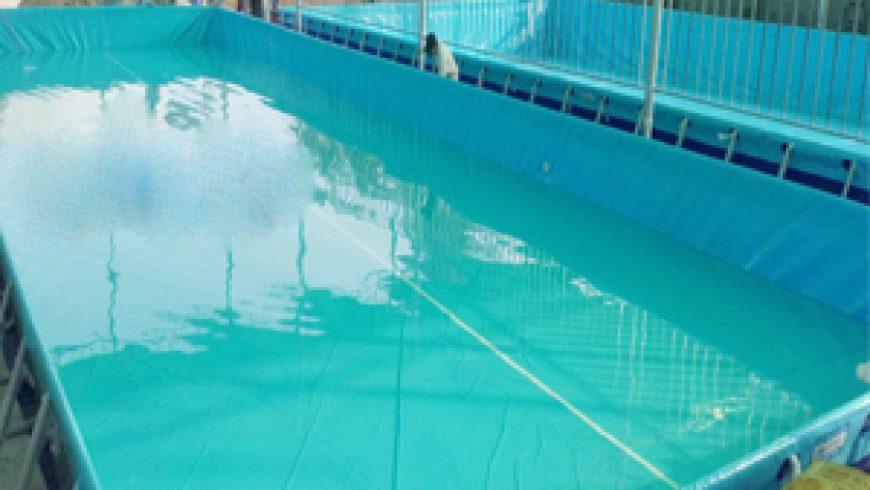 Hoàng Hải Bàn giao bể bơi tại Thanh Hóa
